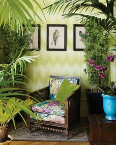 The tropical interiors trend has evolved… now we have the tropical rainforest vibe to tempt you further into the steamy jungle. Image credit: Schulzes Farben- und Tapetenhaus