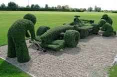 Grass landscape design