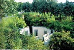 Alexander Chemetoff ( 1950 ) jardin de bambous 1986 87 3 ha La Villette.jpg (1036×704)