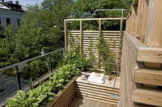 Se hva du får for kroner per kvadrat Garden Bridge, Tiny House, Small Spaces, Outdoor Structures, Urban, City, Plants, Patio, Heavens
