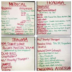 Medical and Trauma Assessment