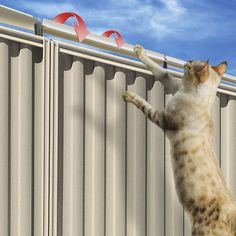 The Oscillot Cat Containment System works by incorporating a twisting rod that won't allow cats to maintain a good grip on the top of the fence. This makes it virtually impossible for them to get out and keeps them contained to your property without having to use leashes.
