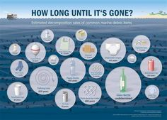 Was ist Plastik? Kunststoff Herstellung, Recycling & Co Disintegration time of plastic garbage in the sea and in the environment Plastic Bottles, Glass Bottles, Plastic Bags, Plastic Items, Water Bottles, Wow Journey, Method Soap, Great Pacific Garbage Patch, Garbage In The Ocean