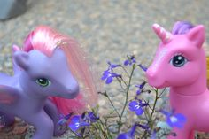 mlp photography | Tumblr