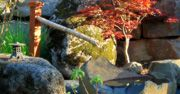 This rustic bamboo spout fits in beautifully with the stonework and colors. Design by Paradise Restored Landscaping.