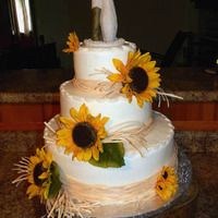 Okay I like this one a lot too!  Diane's Cakery - wedding cakes, birthday cakes, baby shower cakes, anniversary cakes, Farmington, MO - Photo Gallery - Wedding Cakes