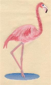 Machine Embroidery Designs at Embroidery Library - Flamingos