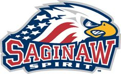 Saginaw Spirit Primary Logo (2003) - An Eagle with American flag body over script