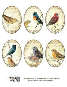 Ephemera's Vintage Garden: Weekly Freebie: Oval Songbird Tags