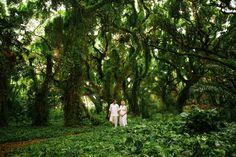 Nature Walk #forestphotography #maui #maternityphotography