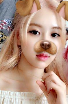 rose I love the😤😤 Blackpink Photos, Rose Photos, Yg Entertainment, Kim Jennie, Rose Video, Blackpink Members, Rose Park, Kim Jisoo, Park Chaeyoung