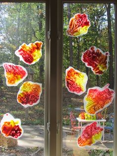 Fall leaves in the window