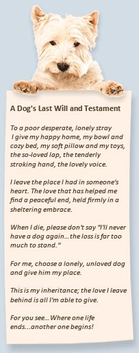 (after a time of grieving and only when you're ready to love again)A Dog's Last Will and Testament
