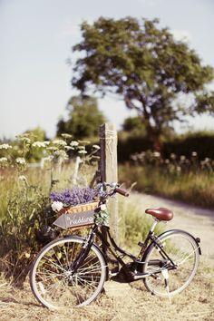 Rebecca Wedding Photography: Stunning Sunny Summer Lavender Farm Wedding...