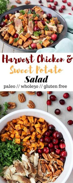 This Harvest Chicken & Sweet Potato Salad makes for a perfect healthy fall meal. Make it for a holiday party or meal prep to have it all week long. It is gluten free, dairy free, paleo, and Whole30 approved - Eat the Gains