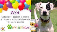 Cumpleaños de Gya