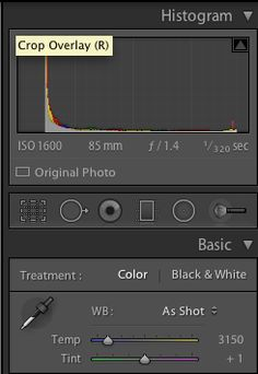 White balance tool in RAW