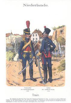 Vol 17 - Pl 49 - Die Holländische Armee unter König Ludwig 1806-10. Train.