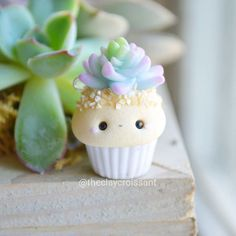 "4,074 Likes, 59 Comments - Meghan (@theclaycroissant) on Instagram: ""A little Succulent Cupcake made for a trade I've been working on. :) He's making friends with the…"""