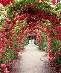 - Elena Bautista - English garden Pathways - 39 Canopies Plants Ideas Make Beautiful Garden. Beautiful Flowers Garden, Beautiful Gardens, Beautiful Beautiful, Garden Paths, Garden Landscaping, Garden Tips, English Garden Design, Garden Canopy, Garden Care