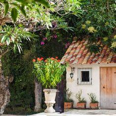 #bali #landscape #landscaping #garden #landscapedesign #gardendesign #tropical #tropicalgarden #gardenideas #landscapeideas #artworks #pot