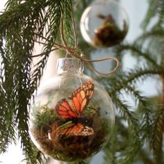 good morning! i saw these homemade terrarium ornaments on design sponge and thought it was the coolest idea. they add some nature to your christmas tree, even though they're actually fake (so you don't have to worry about watering them), and as the blogger who made them suggests, they'd be a great decoration for the