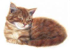 http://www.porterfieldsfineart.com/AnneMortimer/catnap.htm
