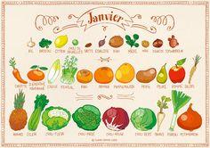Calendrier des fruits et légumes de saison | Les Incroyables Comestibles Dijon
