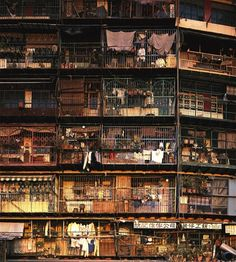 One of the great contributions to the richness of Hong Kong's urban scene were without doubt the caged balconies that lined the elevations not only of the Walled City, but also of many of the city's other older tenement buildings. Kowloon Walled City, Fotografia Social, Bg Design, Hongkong, Slums, City Life, Street Photography, Scenery, Around The Worlds