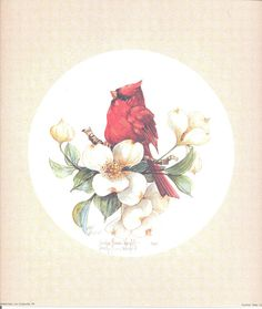Male Cardinal 10 x 10 signed and numbered lithograph