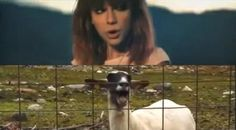 I knew you were a goat.