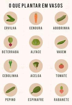 Para ter uma salada fresquinha saborosa, reunimos as verduras e legumes para pla… To have a tasty fresh salad, we have gathered the vegetables to plant in pots. Come see how to create a beautiful garden
