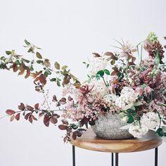 Elegant Springtime c
