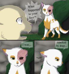 This started my dislike for Daisy - Daisy and Brightheart: Scars by MiaMaha.deviantart.com on @deviantART