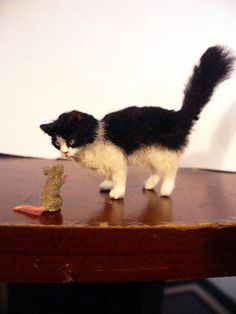 This little cat is only about 1 1/2 inches big. So cute!