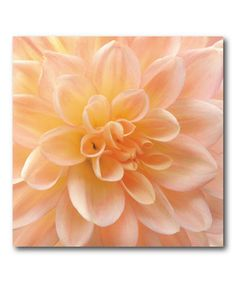 This Dahlia II Canvas Wall Art by COURTSIDE MARKET is perfect! #zulilyfinds