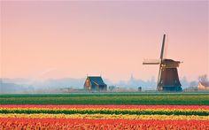 Interactive Netherlands, bike-trip planner