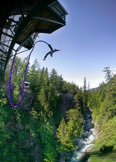 Discover the best places in Canada to Bungee Jump. Bungee jumping may not be an everyday activity for most Canadians, but it& a superb way to experience Canada. Places To Travel, Places To Visit, Backpacking Canada, Surf, Rock Climbing Gear, Bungee Jumping, Whistler, Adventure Travel, Adventure Awaits