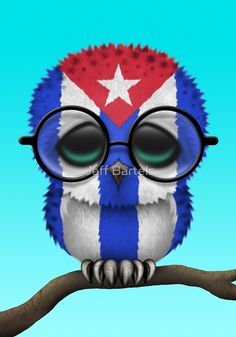 Nerdy Cuban Baby Owl on a Branch by Jeff Bartels