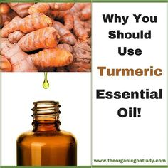 Have you ever hear of Turmeric Essential Oil? Essential oils are the concentrated forms of plants, making Turmeric Essential Oil the concentrated form of. Frankincense Essential Oil Uses, Essential Oils For Nausea, Turmeric Essential Oil, Best Essential Oil Diffuser, Helichrysum Essential Oil, Ginger Essential Oil, Essential Oils Cleaning, Chamomile Essential Oil, Essential Oils For Skin