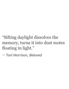 """dust motes floating in light"" -Toni Morrison Writer Quotes, Literary Quotes, Poem Quotes, Poems, Life Quotes, The Words, Cool Words, Beloved Quotes, Toni Morrison"