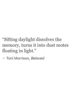 """dust motes floating in light"" -Toni Morrison"
