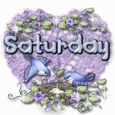 Saturday birds pretty days purple days of the week saturday weekdays happy saturday saturday greeting