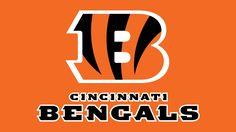 Cincinnati Bengals Logo http://www.bengals.com/ http://pinterest.com/nfldraftday/