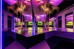 rafael de cárdenas' prismatic neon jungle pops-up in the miami design district
