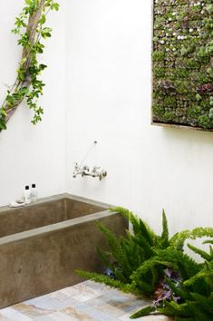 11 incredible ways to use indoor plants gallery 10 of 11 - Homelife