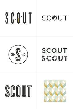 process 12 : scout