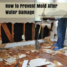 27 best water damage restoration images in 2019 water damage rh pinterest com