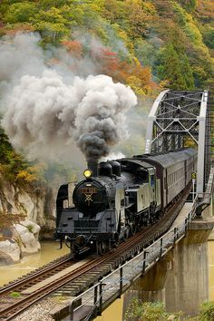 Train in autumn
