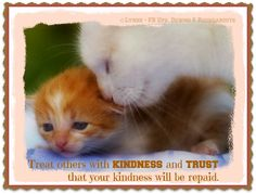Treat others with KINDNESS and TRUST that your kindness will be repaid.